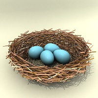 """A bird in the hand is worth two in the bush: """"bird's nest"""" co-parenting."""