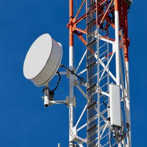 Could a Developer force an Electronic Communications Operator to Relocate Electronic Communication Apparatus?